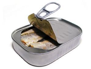 אומגה 3 - דגים