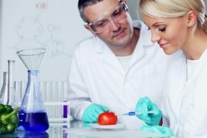 אלצהיימר: מחקר נוסף בתחום בדיקות הדם